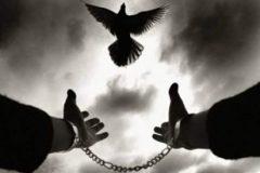 آزاد کردن زندانی